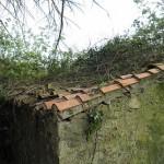 Cabane en bois avant nettoyage